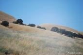 """""""Grapes of Wrath"""" Country, California (September 2011)"""