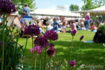 Festival-goers lounge in the sun amongst the flowers on festival grounds.